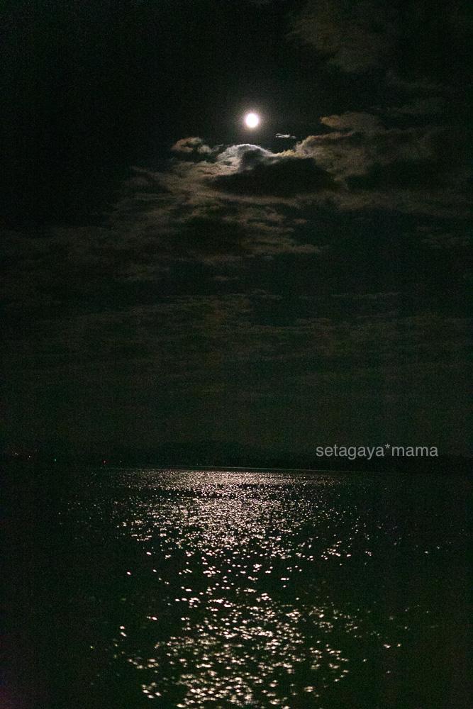 itsukushima_MG_0248