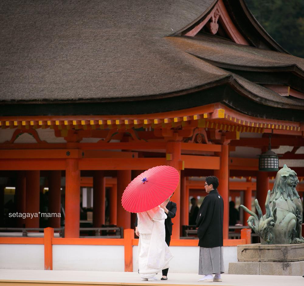 itsukushima_MG_9704