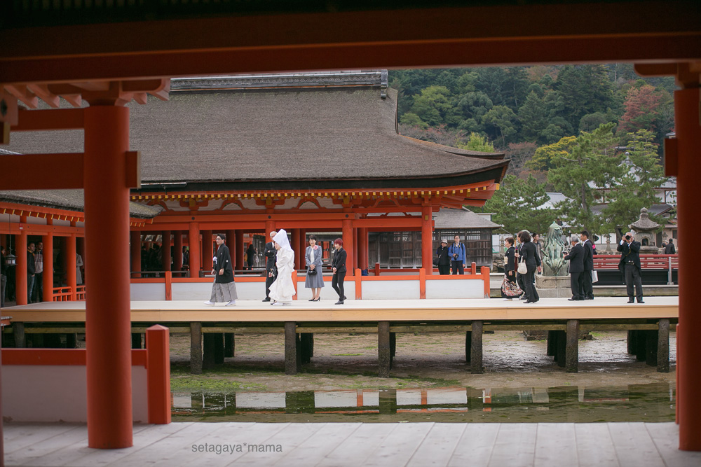 itsukushima_MG_9711