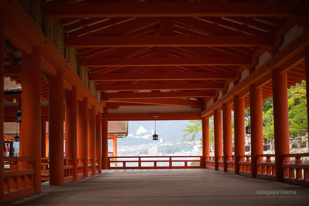 itsukushima_MG_9764