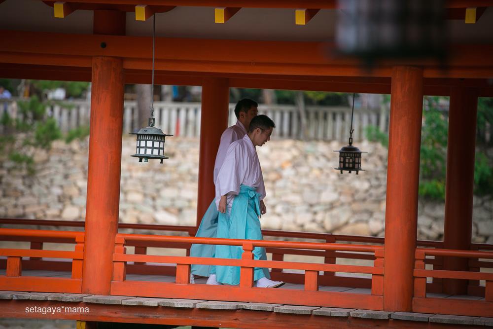 itsukushima_MG_9767
