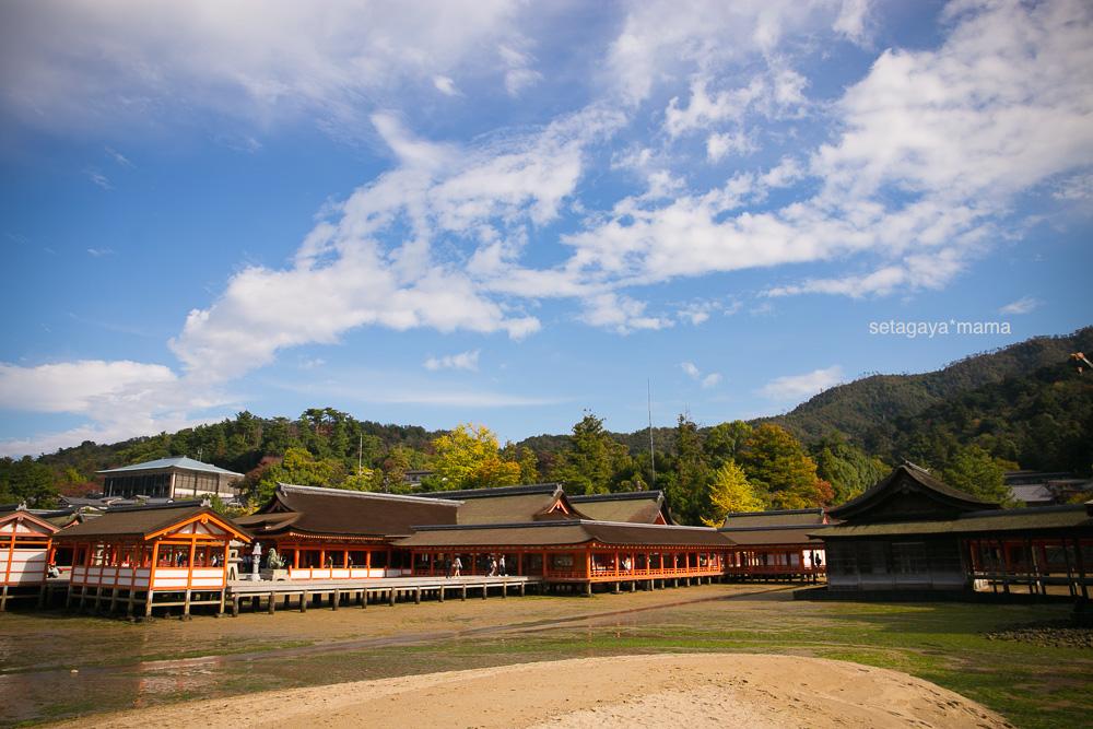 itsukushima_MG_9906