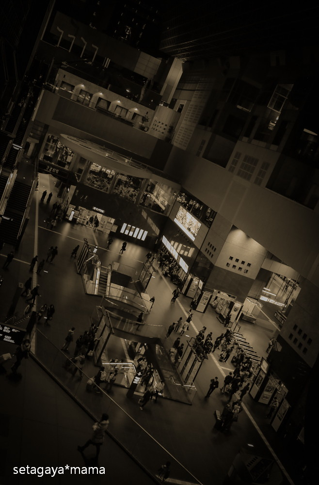 kyoto stn_MG_4469