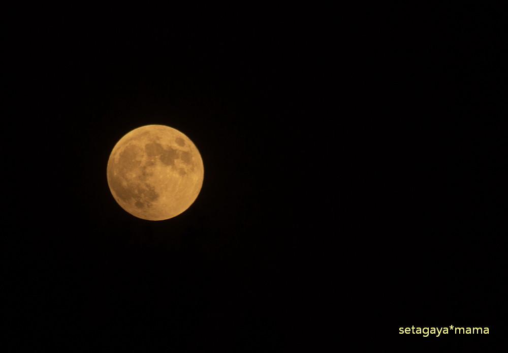 moon _MG_7807