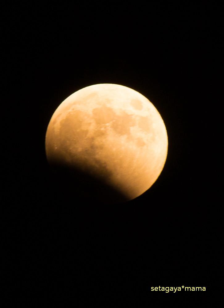 moon _MG_7814