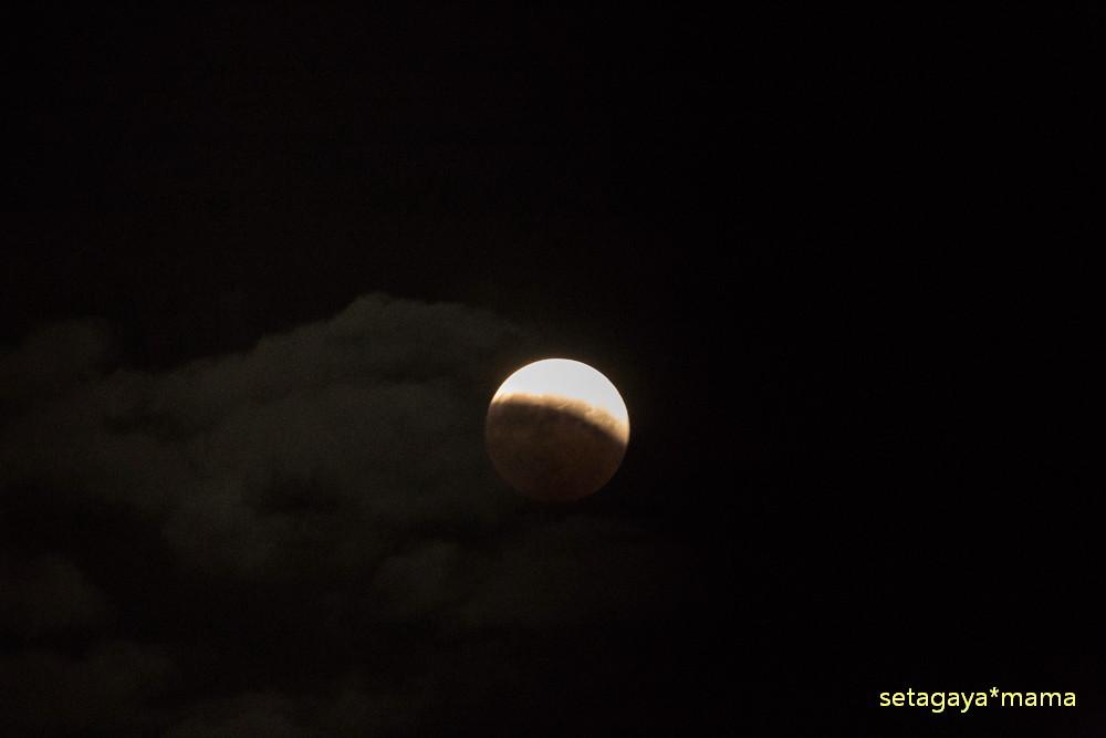 moon _MG_7828