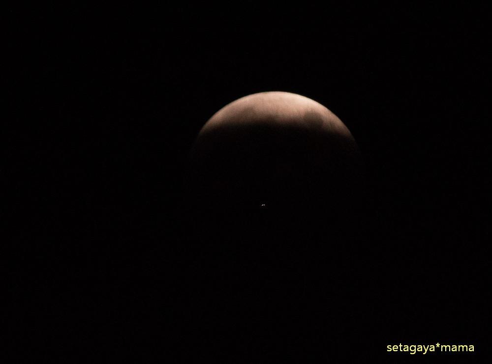 moon _MG_7840