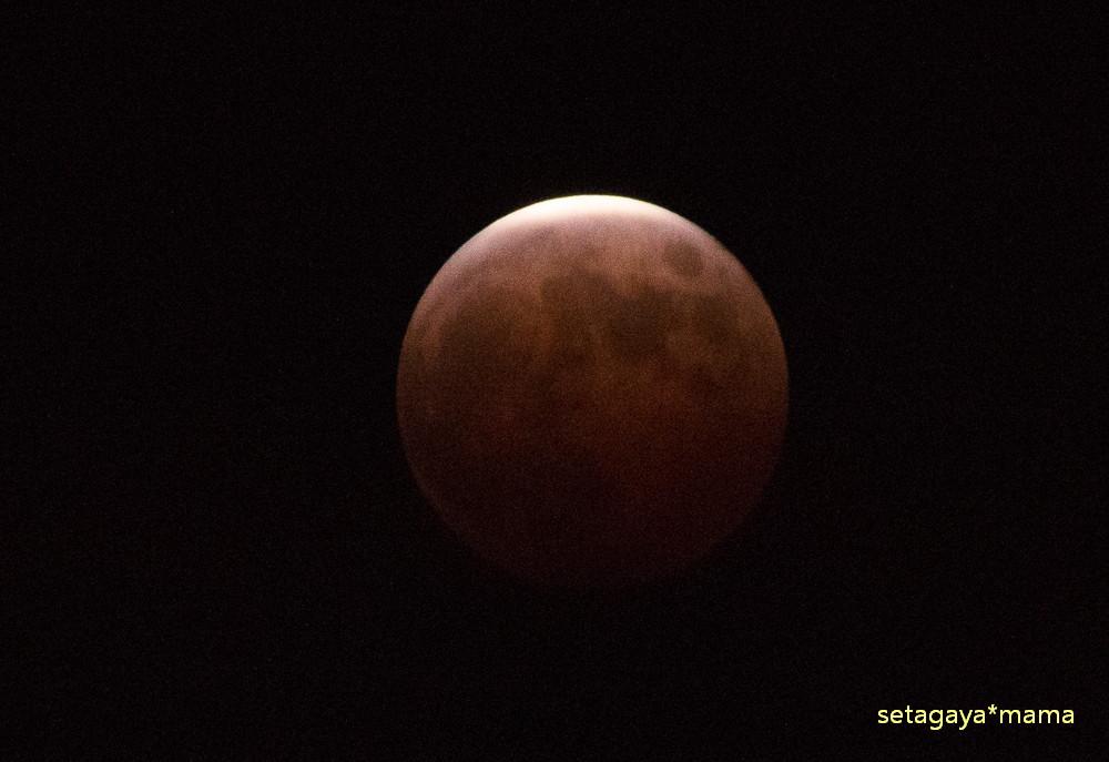 moon_MG_7849