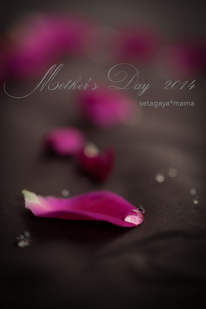 mothers day _MG_9546