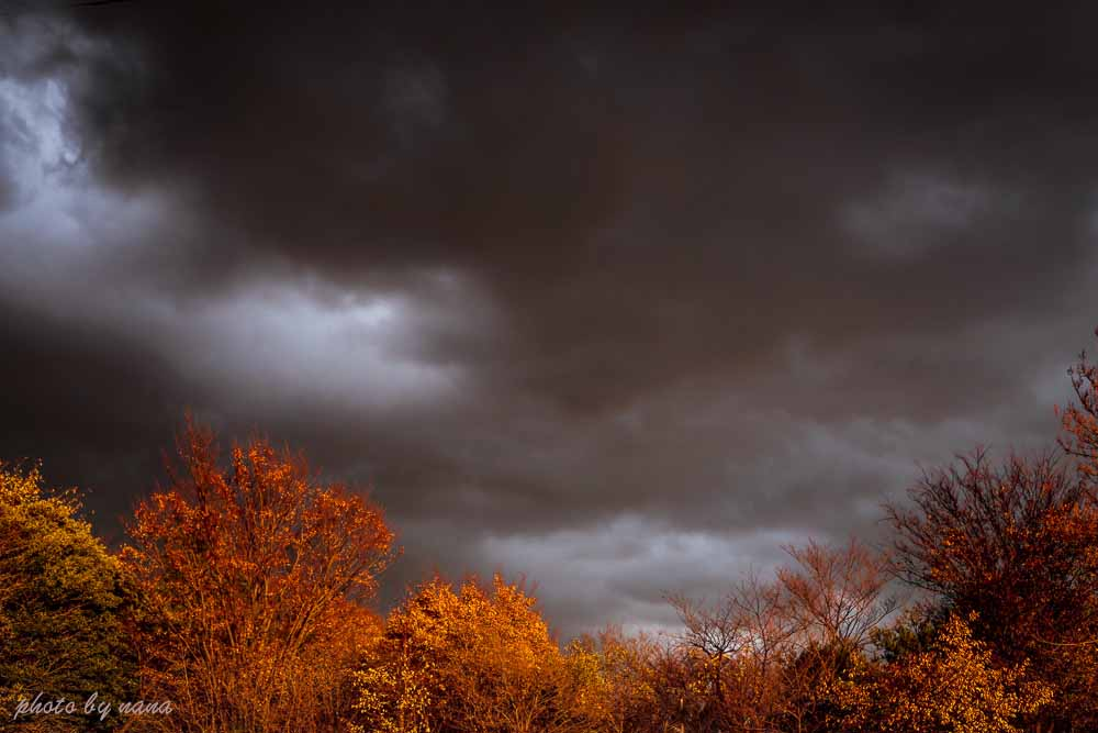 mysterious sky_MG_8131