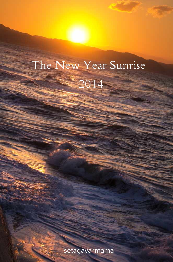 new year 2 IMG_2522