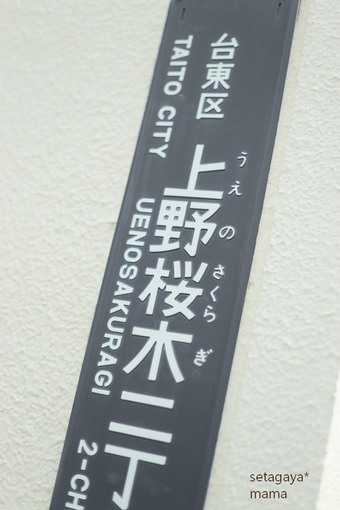 nippori _MG_7708