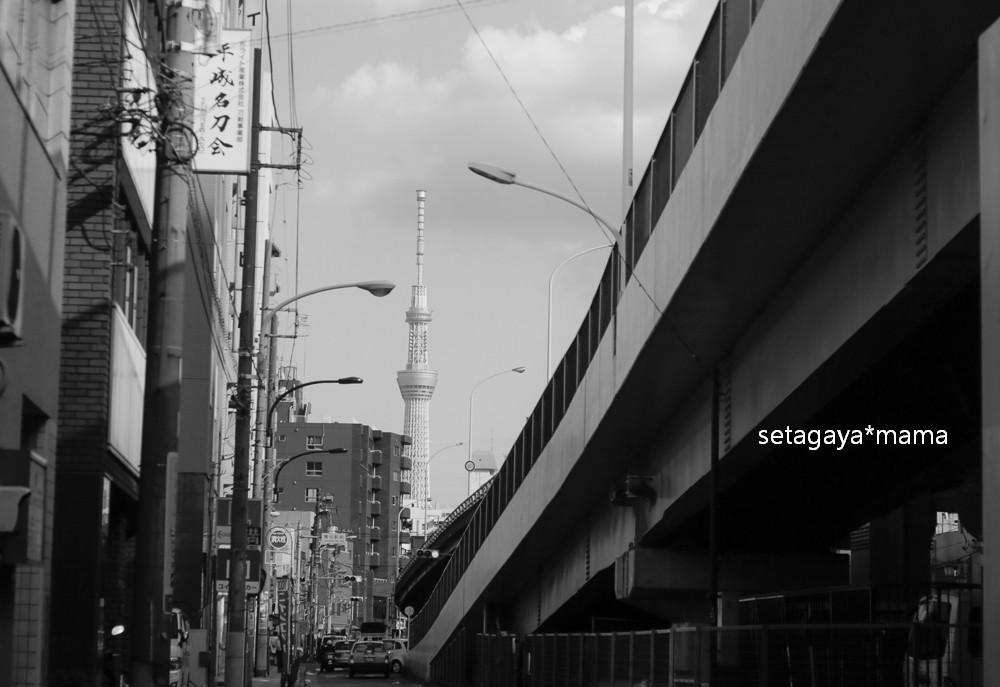 nippori _MG_7795