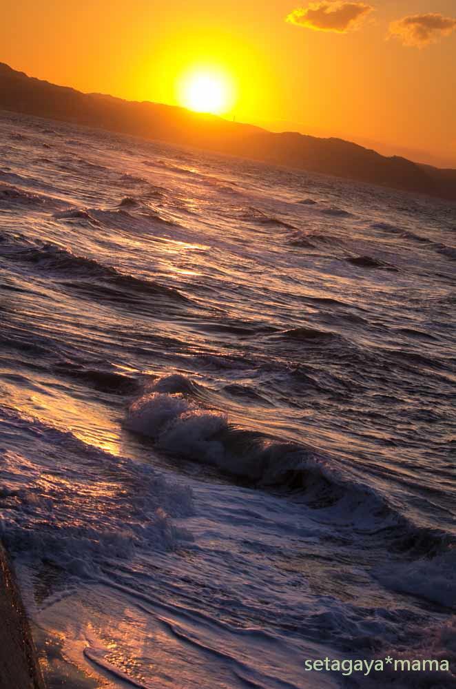ocean IMG_2522