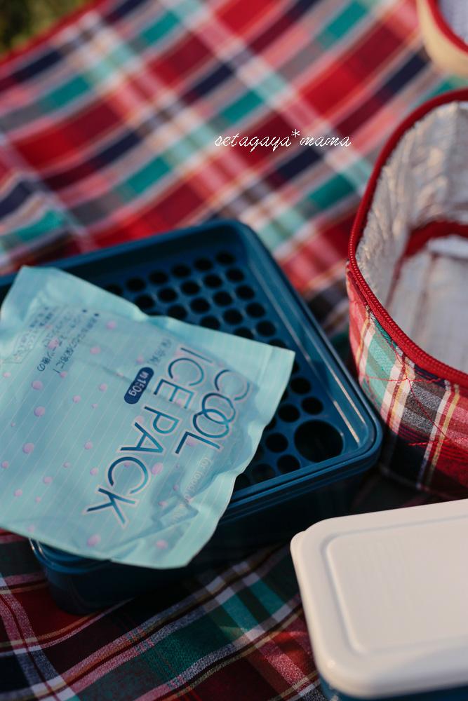 picnic_MG_8689