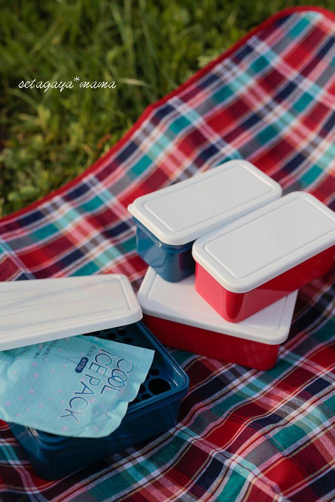 picnic_MG_8690