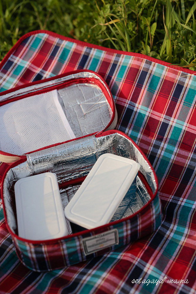 picnic_MG_8694