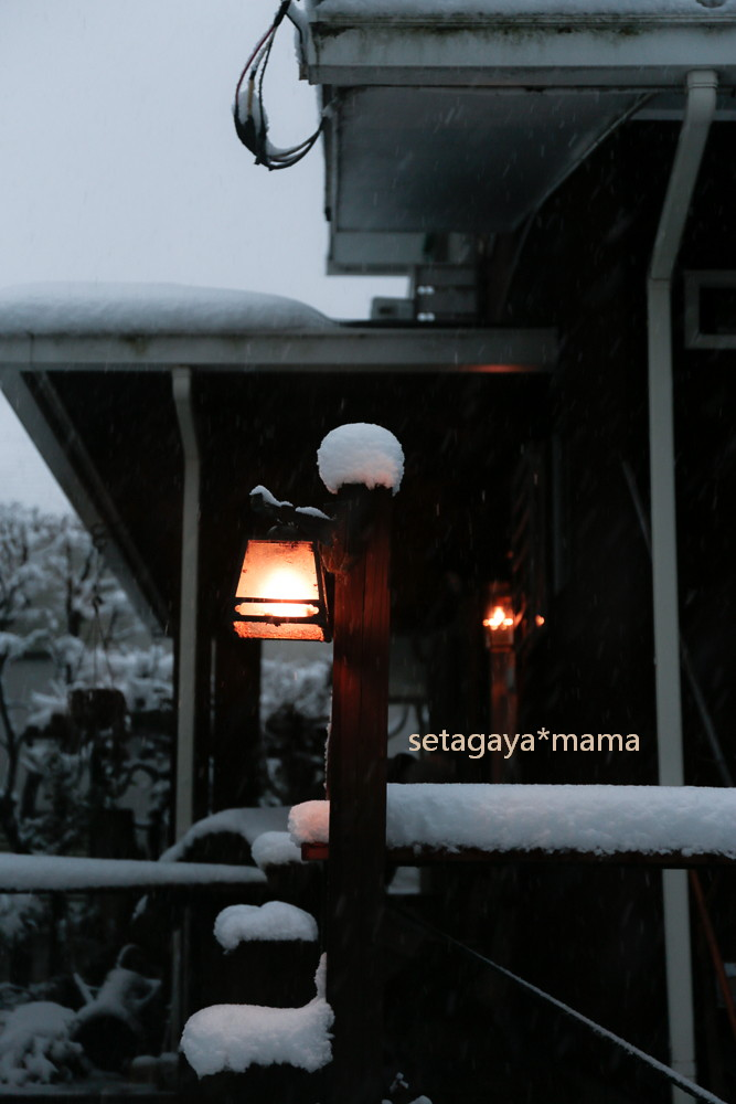 snow 2014 _MG_2961