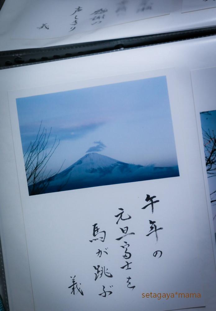 snow 2014 _MG_2977