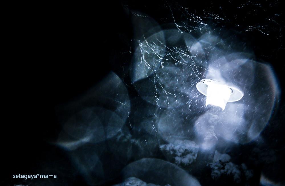 snow 2014 _MG_3039