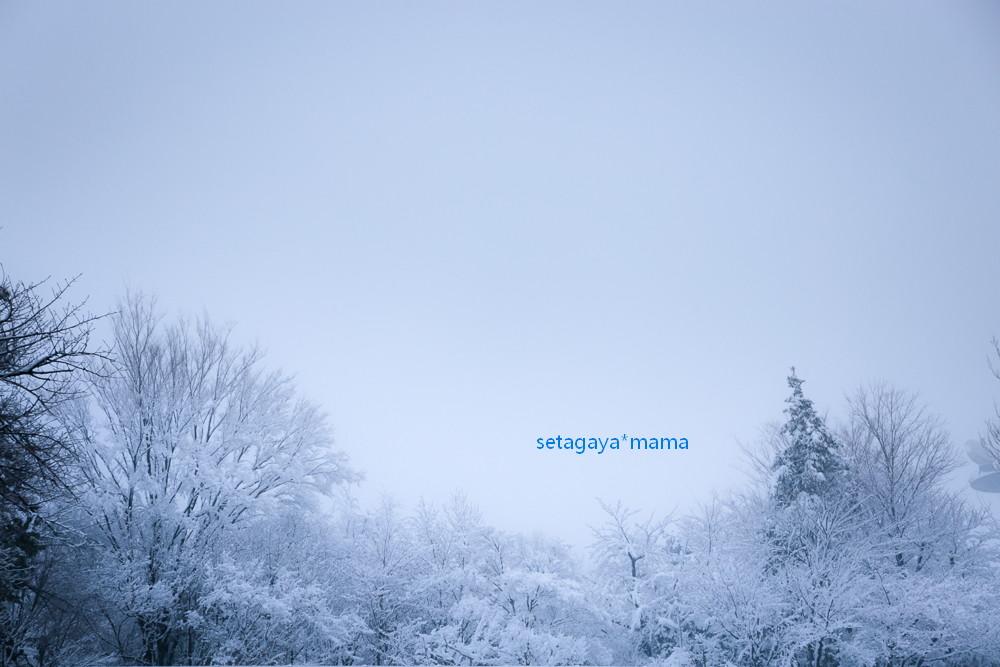snow 2014_MG_2942