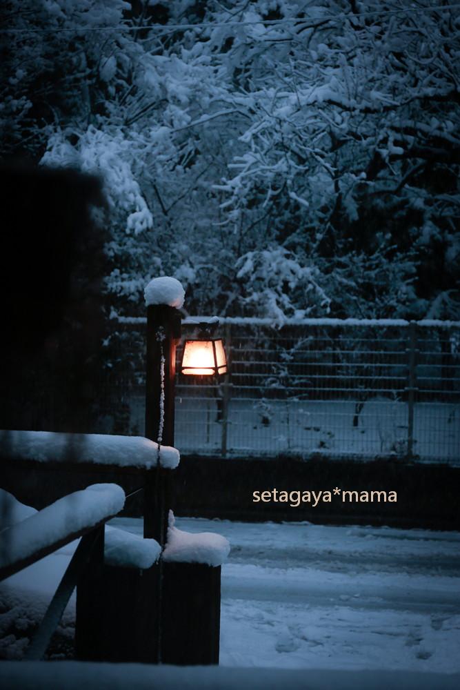 snow2014 _MG_2964