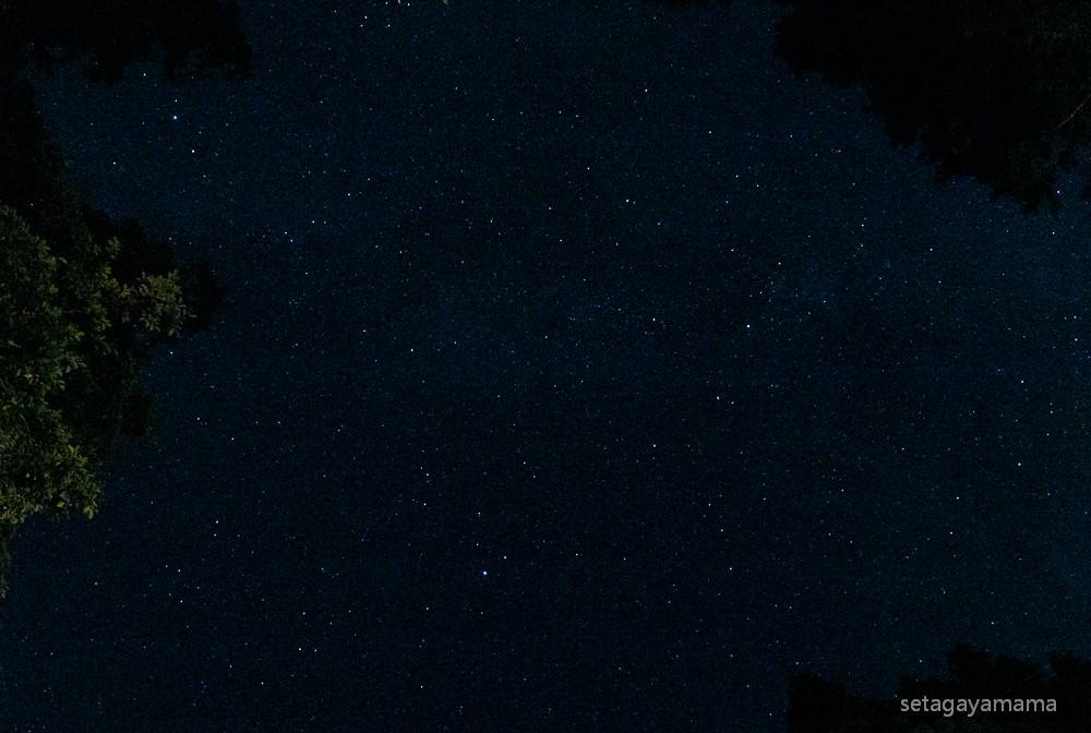 stars_MG_5407