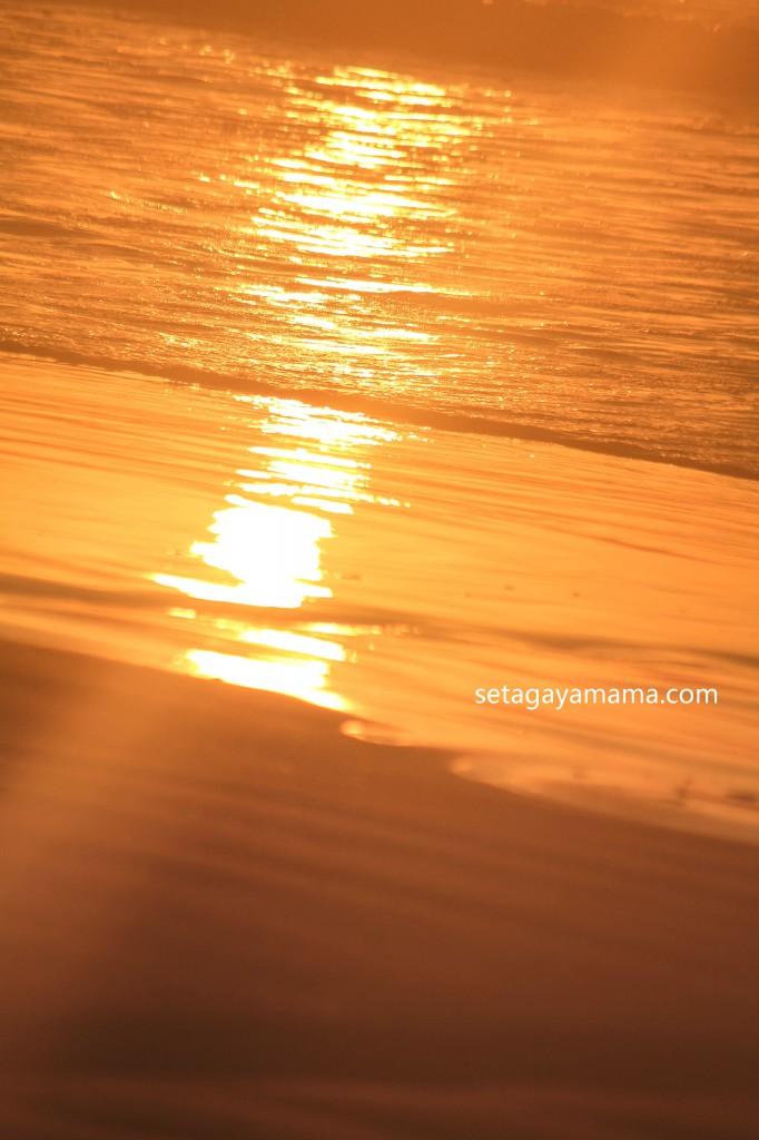 sunrise IMG_8543