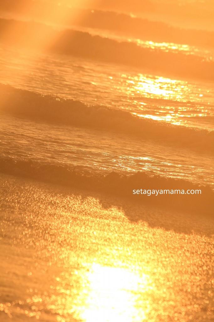 sunrise IMG_8549