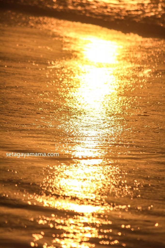 sunrise IMG_8564