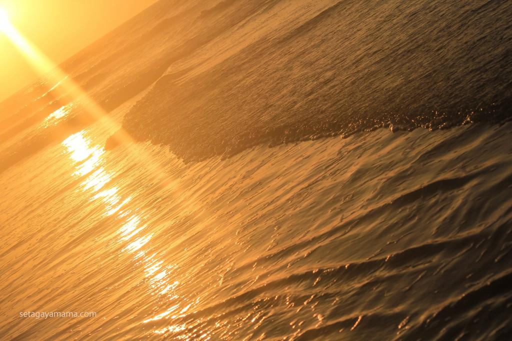 sunrise IMG_8568