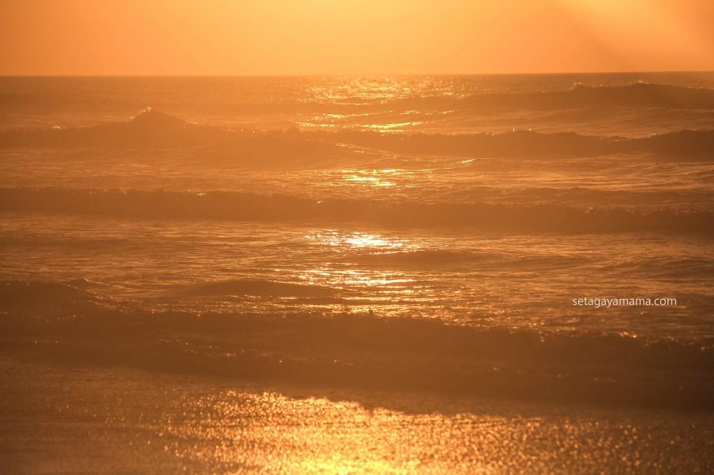 sunrise IMG_8579