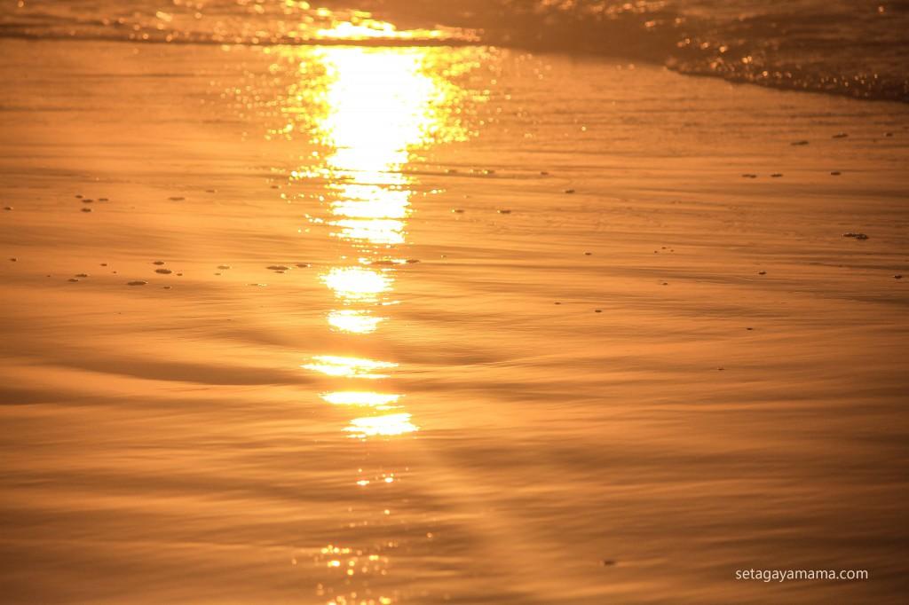 sunrise IMG_8580