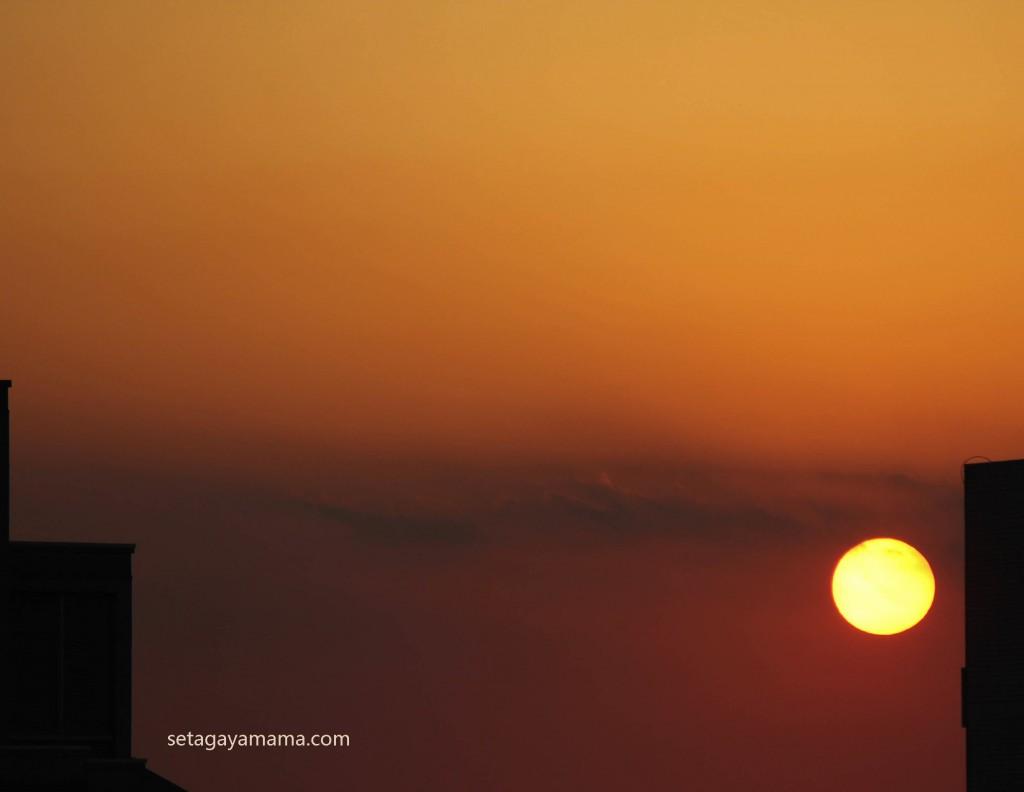 sunset IMG_0877