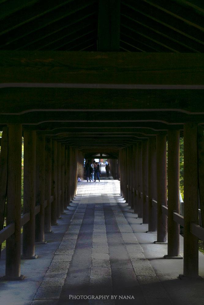 tofukuji_mg_9127