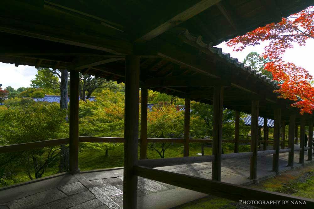 tofukuji_mg_9131-2