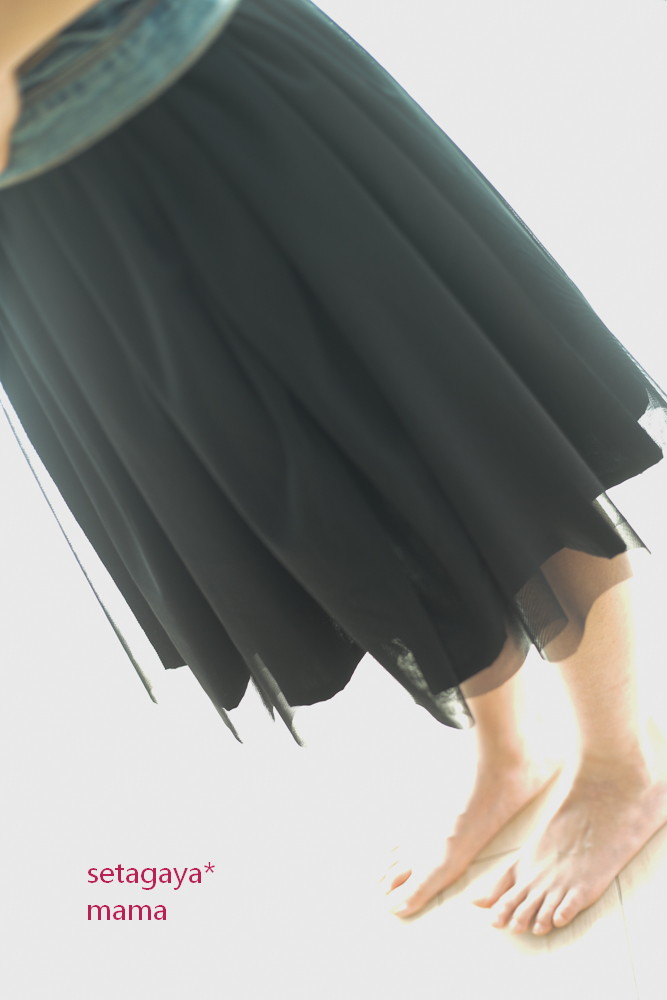 tulle _MG_5353