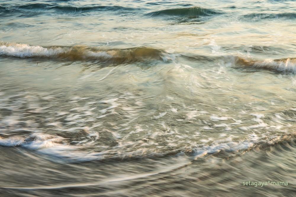 wave _MG_7221